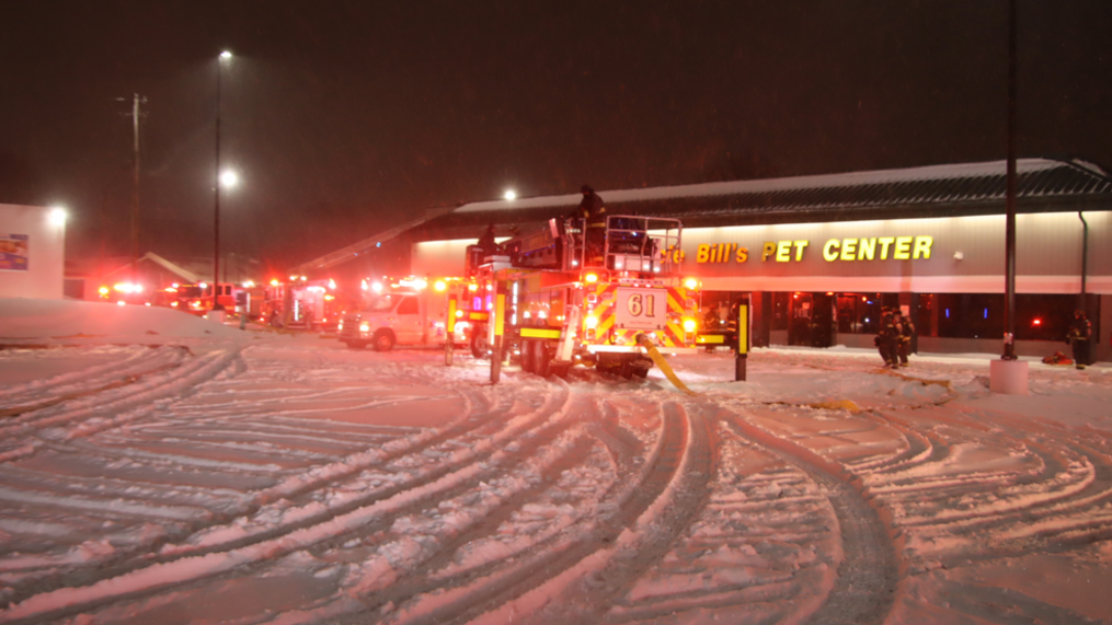 At Least 100 Animals Killed in Overnight Fire at Indianapolis Pet Store