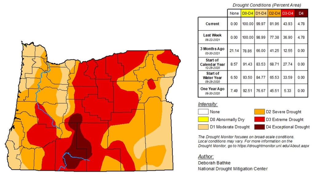 <p>As of Thursday, July 1, the US Drought Monitor says just shy of 44% of Oregon - including parts of Lane County - face an Extreme Drought. Nearly 82% of Oregon faces Extreme or Severe drought conditions - and only .03% faces anything less than Moderate drought at the time. The entire state qualifies as Abnormally dry - or worse. (US Drought Monitor){/p}