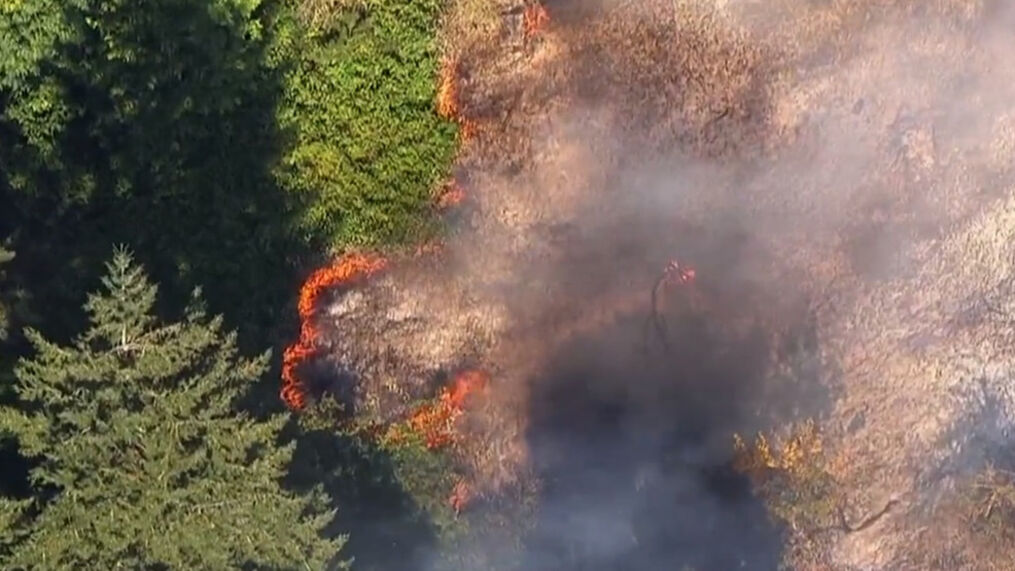 All evacuation orders lifted, 99E reopened after brush fire north of Canby  | KATU