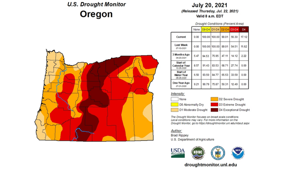 Over 56% of Oregon faces Extreme Drought conditions - with nearly 17% of the state experiencing Exceptional Drought, the worst category. All told, over 90% of the state qualifies as Severe Drought or worse. The U.S. Drought Monitor is jointly produced by the National Drought Mitigation Center at the University of Nebraska-Lincoln, the United States Department of Agriculture, and the National Oceanic and Atmospheric Administration. Map courtesy of NDMC.