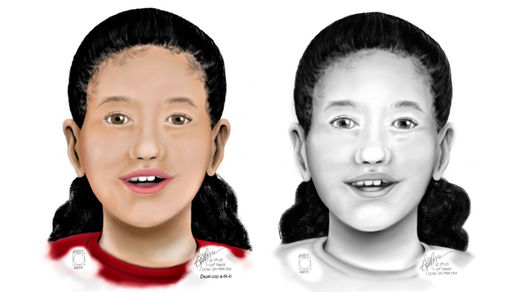 <p>Investigators have developed new information about a girl found dead inside a duffe; bag stashed in the forest near the H.B. Van Duzer Forest State Scenic Corridor. Her body was found December 10, 2020 - and police do not believe anyone ever reported her missing. She has likely not been seen since November 2020, police said. (OSP){/p}
