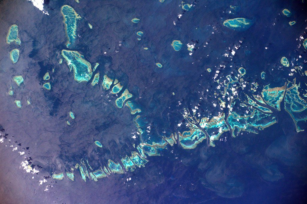 Coral reefs are very important ecosystems. Even as a small part of the ocean, they are home to 25% of all marine organisms!  (Photo & Caption David Saint-Jacques, NASA)
