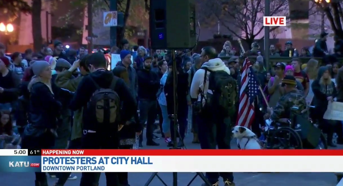 Protesters hold rally at Portland City Hall on Nov. 11 (KATU News photo)