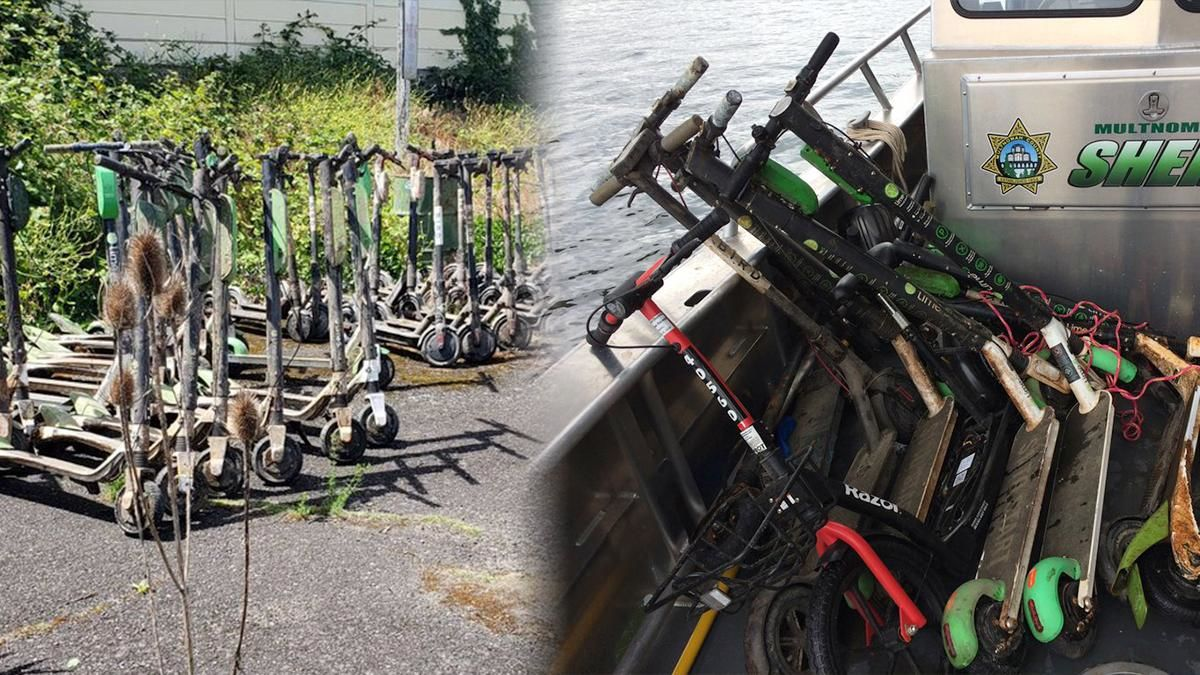 E-scooters recovered from the bottom of the Willamette - Multnomah County Sheriff's Office photos.