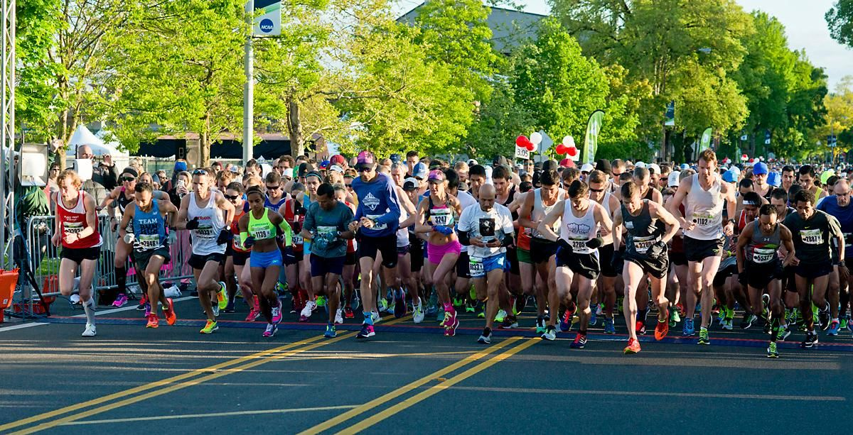 The 11th Annual Eugene Marathon was won by Steve DeKoker with a time of 02:29:46 in the overall division (in bib #1102, far right) and by Hiruni Wijayaratne (bib #1139, left, green top, blue shorts) in the women's division with a time of 02:43:31. The Half Marathon was won by Eric Finan with a time of 01:06:11 and the first woman to finish the Half was Ashley Nichols with a time of 01:20:19. Rounding out the top five in the Full Marathon was Raul Arcos 02:30:40; Shaun Frandsen 02:31:50, Bashar Ibrahim 02:33:52, and Stephen Harris 02:34:45. In the women's division Hiruni Wijayaratne was followed by Yelena Nanaziashvili 02:44:11, Marisa Ryan 02:46:50, Heather Banks 02:49:47, and Karin Wimer 02:51:39. The Half Marathon top five included Yon Yilma 01:07:49, Erik Teig 01:07:52, Craig Hopkins 01:09:09, and Rio Reina 01:09:11. Photo by Dan Morrison, Oregon News Lab