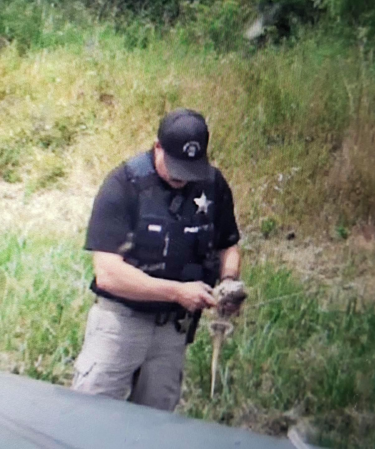 "<p>Oregon State Police Sgt. Clay Core was near the corner of Marcola Road & 42nd Street in Springfield on Tuesday ""came across something very strange looking crossing the road."" The trooper pulled over to investigate - and a green dragon poked its head out of the grass. (OSP)</p>"