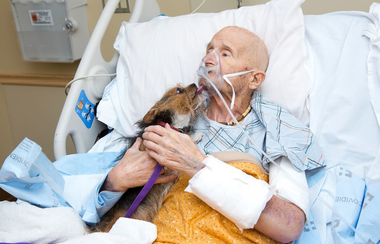 Veteran's final wish to see his dog one last time granted. Photos: Albuquerque Animal Welfare.<p></p>