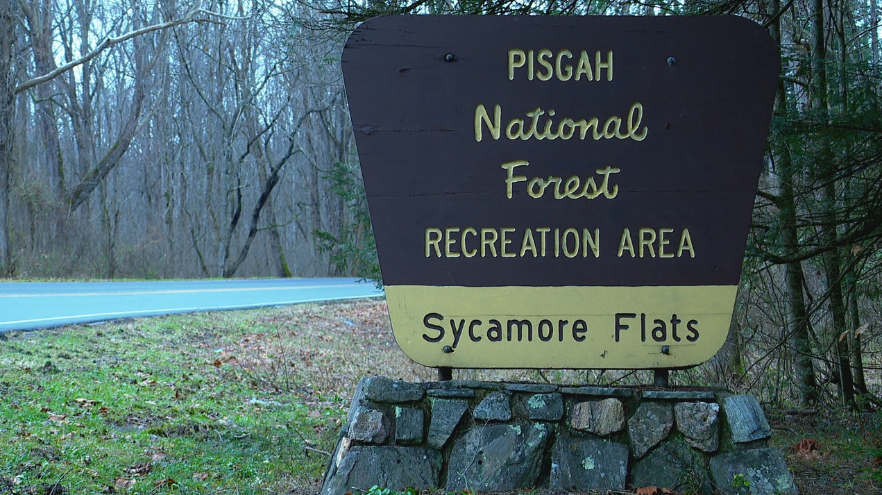 The U.S. Forest Service is proposing recreation fee changes at Pisgah and Nantahala national forests. (Photo credit: WLOS staff)