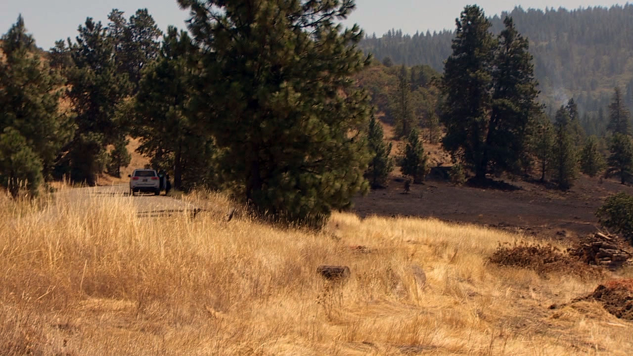 The Mosier Creek Fire burned up against Dry Creek Road. (KATU)