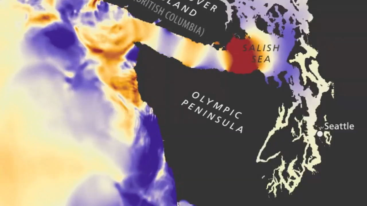 Tsunami simulation for a 9.0 Cascadia quake (Washington Department of Natural Resources)