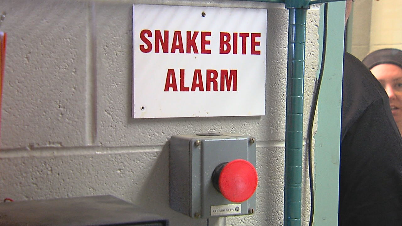 At the Tulsa Zoo, where there are snakes or potential venomous snakes, they have a snakebite alarm. (KTUL photo)