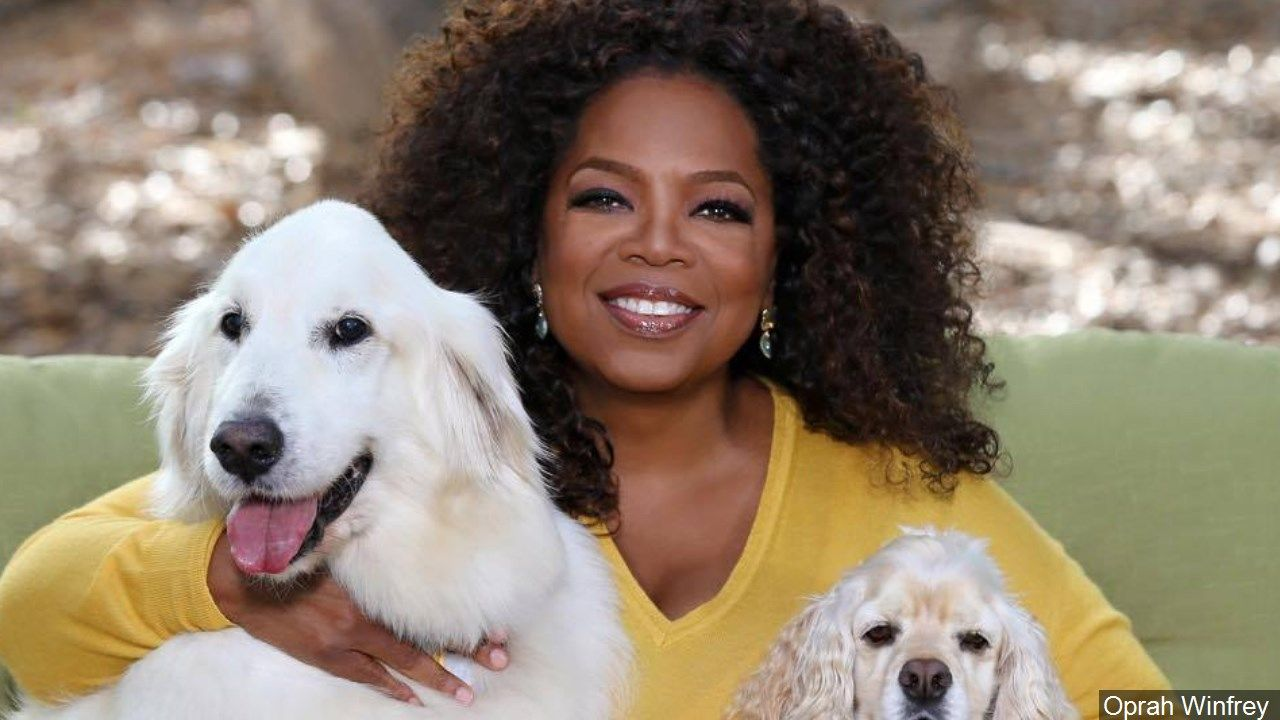 Photo: Oprah Winfrey Via MGN Online<p></p>