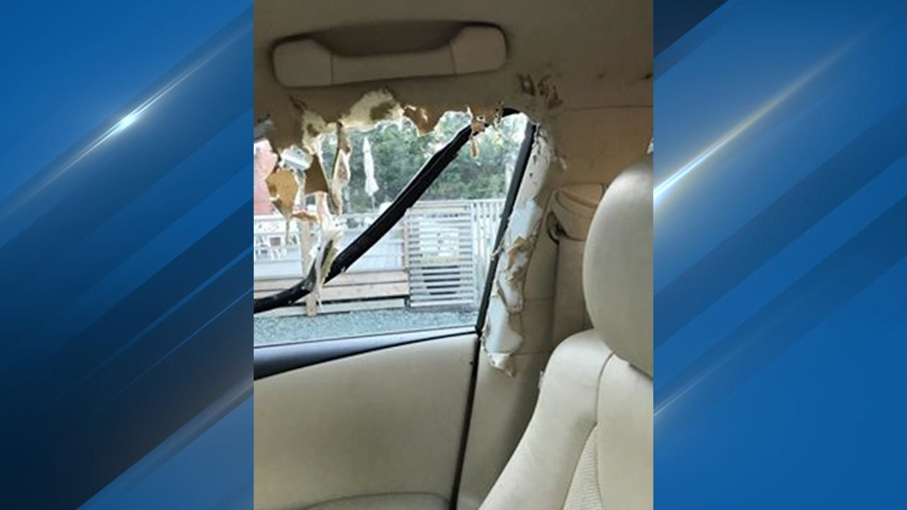 The raccoons did extensive damage to the interior of the car. (Photo courtesy of Wendy Bond)
