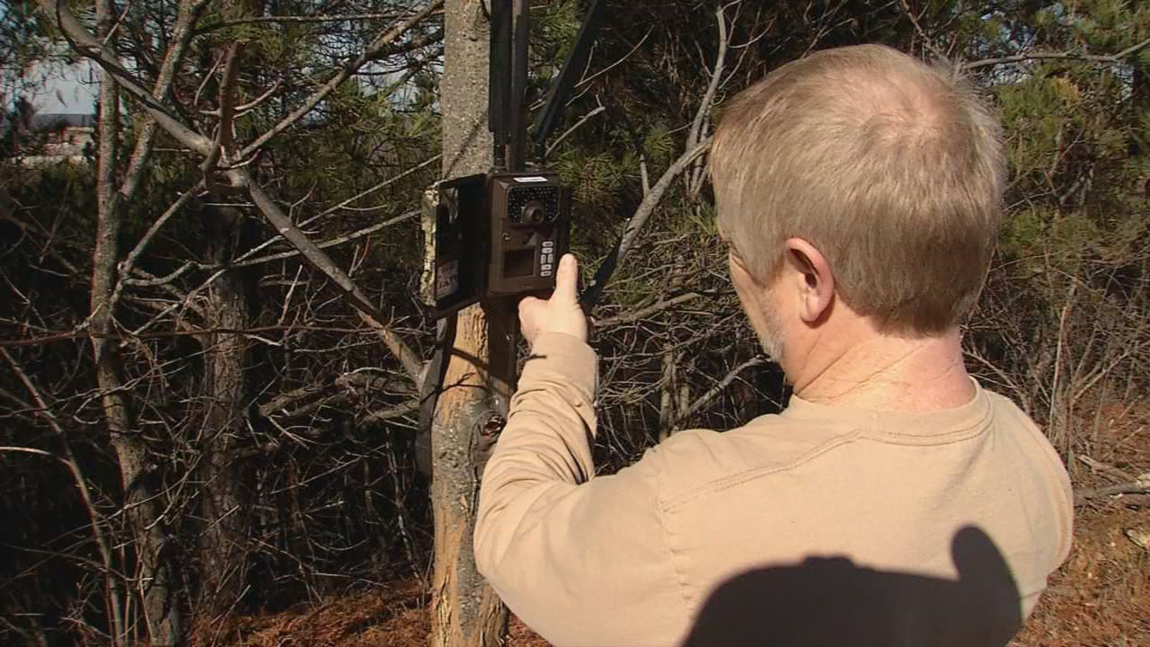 WVDNR Elk Project Leader Randy Kelley checks a game camera for elk activity. (WCHS/WVAH)<p></p>