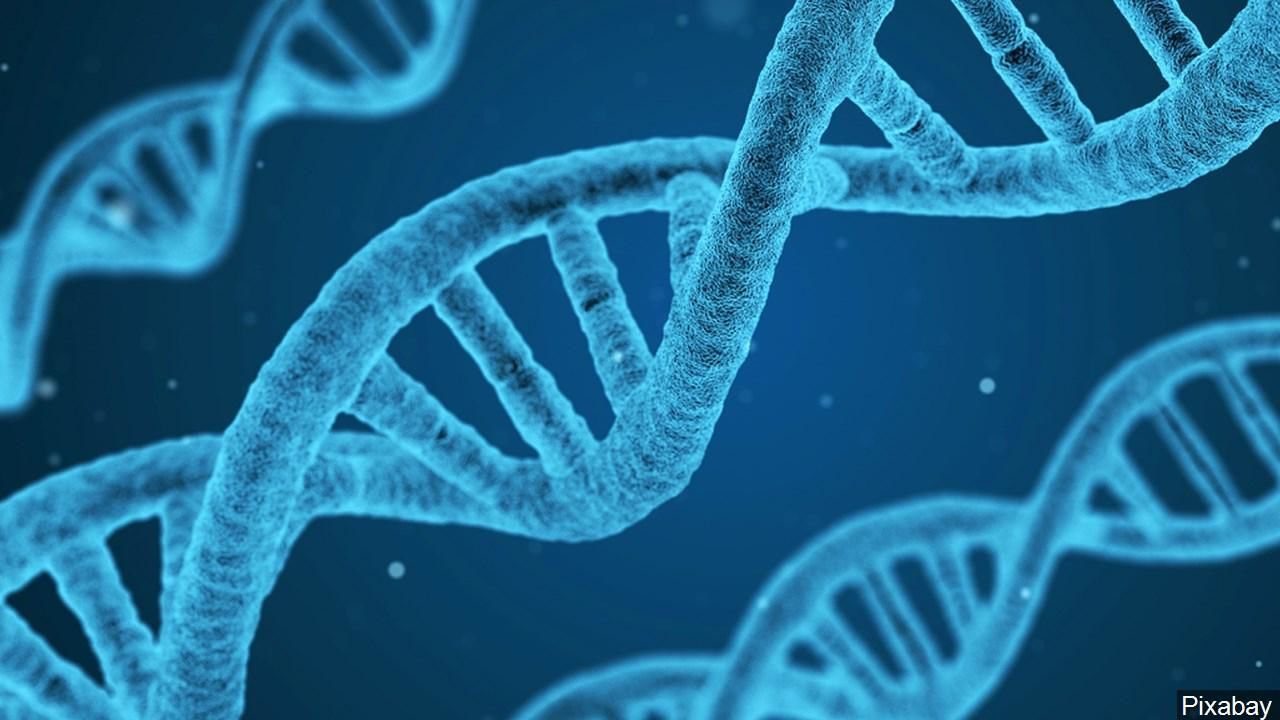<p>PHOTO: DNA, Photo Date: 11/14/2016 (Courtesy: Pixabay via MGN Online)</p><p></p>