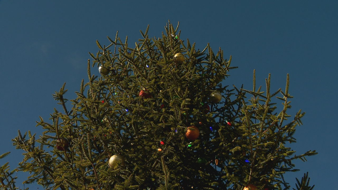 Town officials say a crew was instructed to put up Highlands' Christmas tree without the usual star on top, because in the past the top of the tree broke off due to high winds, and the tree not being able to support it. (Photo credit: WLOS staff)