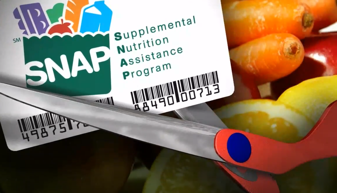 <p>SNAP, food stamps (WJLA)</p>
