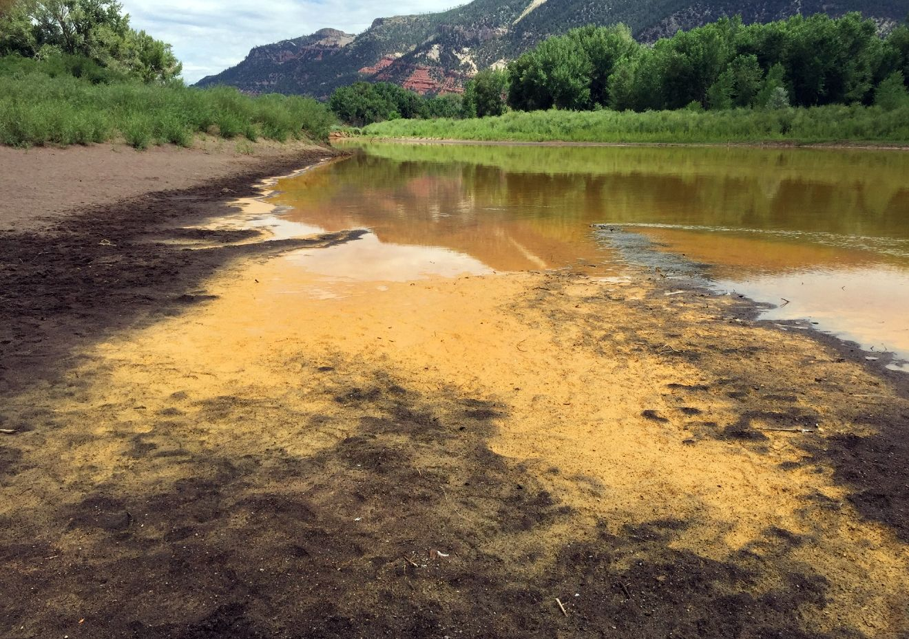 As the Animas River begins to recede it reveals a sludge left behind just north of Durango Colo., on Friday, Aug. 7, 2015, from the Gold King Mine spillage that happened on Wednesday north of Silverton Colo. Federal environmental officials say it's too early to know whether heavy metals that spilled into a river from a Colorado mine pose a health risk.  (Jerry McBride(/The Durango Herald via AP)