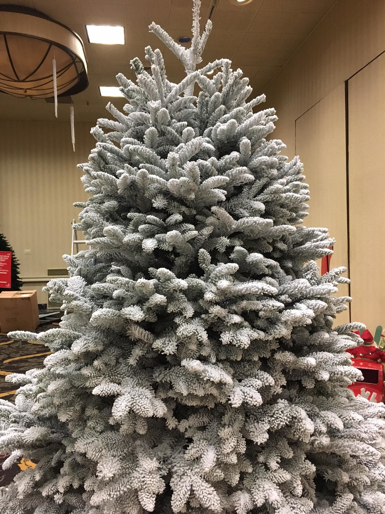The Festival of Trees gets set to celebrate 27 years of Christmas in Lane County (SBG)