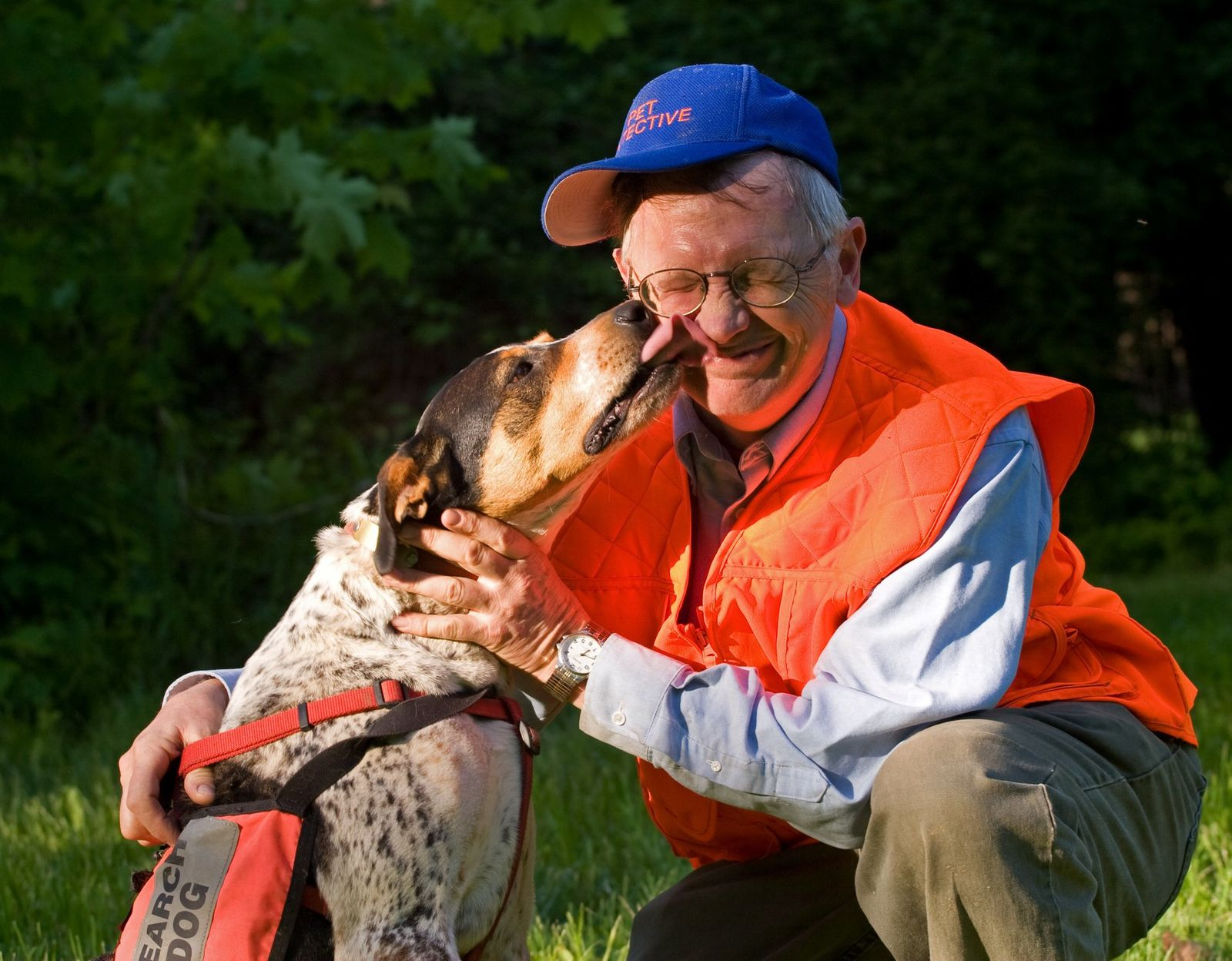 Local Search Dog, a hero who helped in over 500 searches for lost pets, has passed away (Pet Search And Rescue)