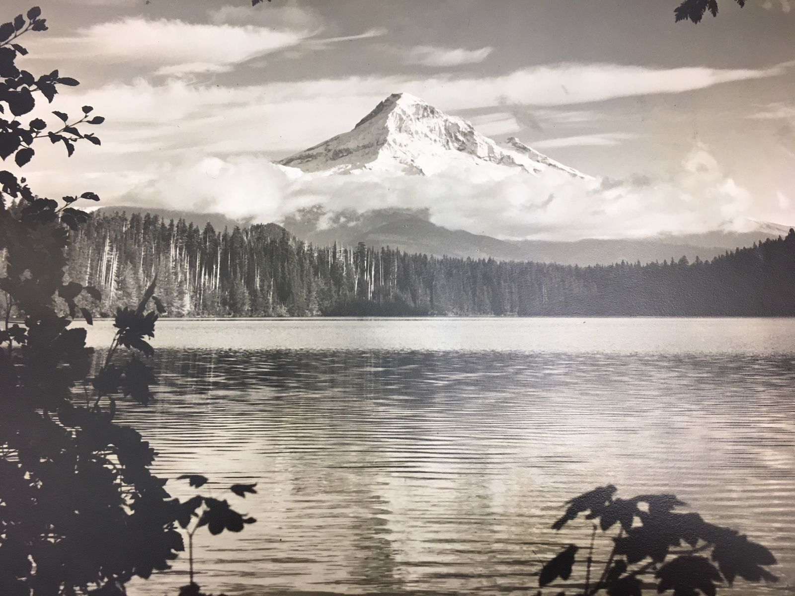 """The Ray Atkeson Photography Collection consists primarily of large-format, black-and-white negatives and large- and medium-format color transparencies, more than 250,000 images in total,"" according to the University of Oregon. (SBG)"