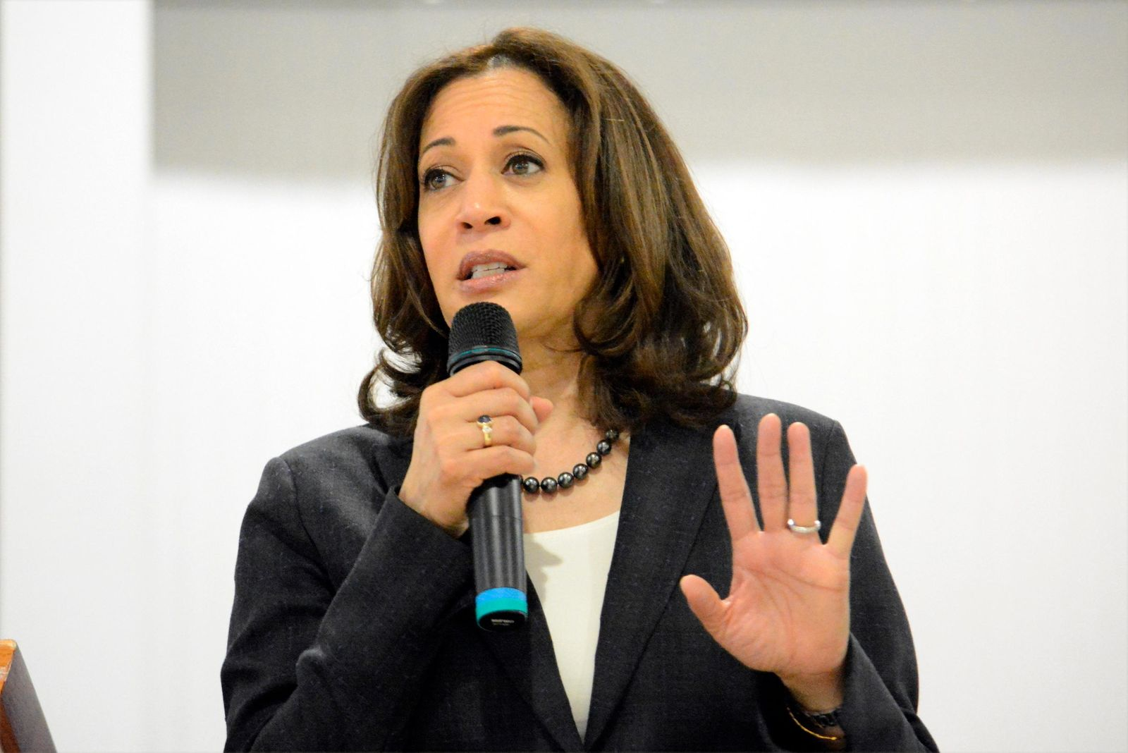 In this March 9, 2019, photo, Sen. Kamala Harris, D-Calif., speaks during an event in St. George, S.C. Elizabeth Warren is betting voters are looking for a policy guru. Harris thinks they want a candidate who moves them with a personal story. As they roll out their president campaigns, the two senators are field-testing dramatically different theories about how to connect to with electorate.  (AP Photo/Meg Kinnard)