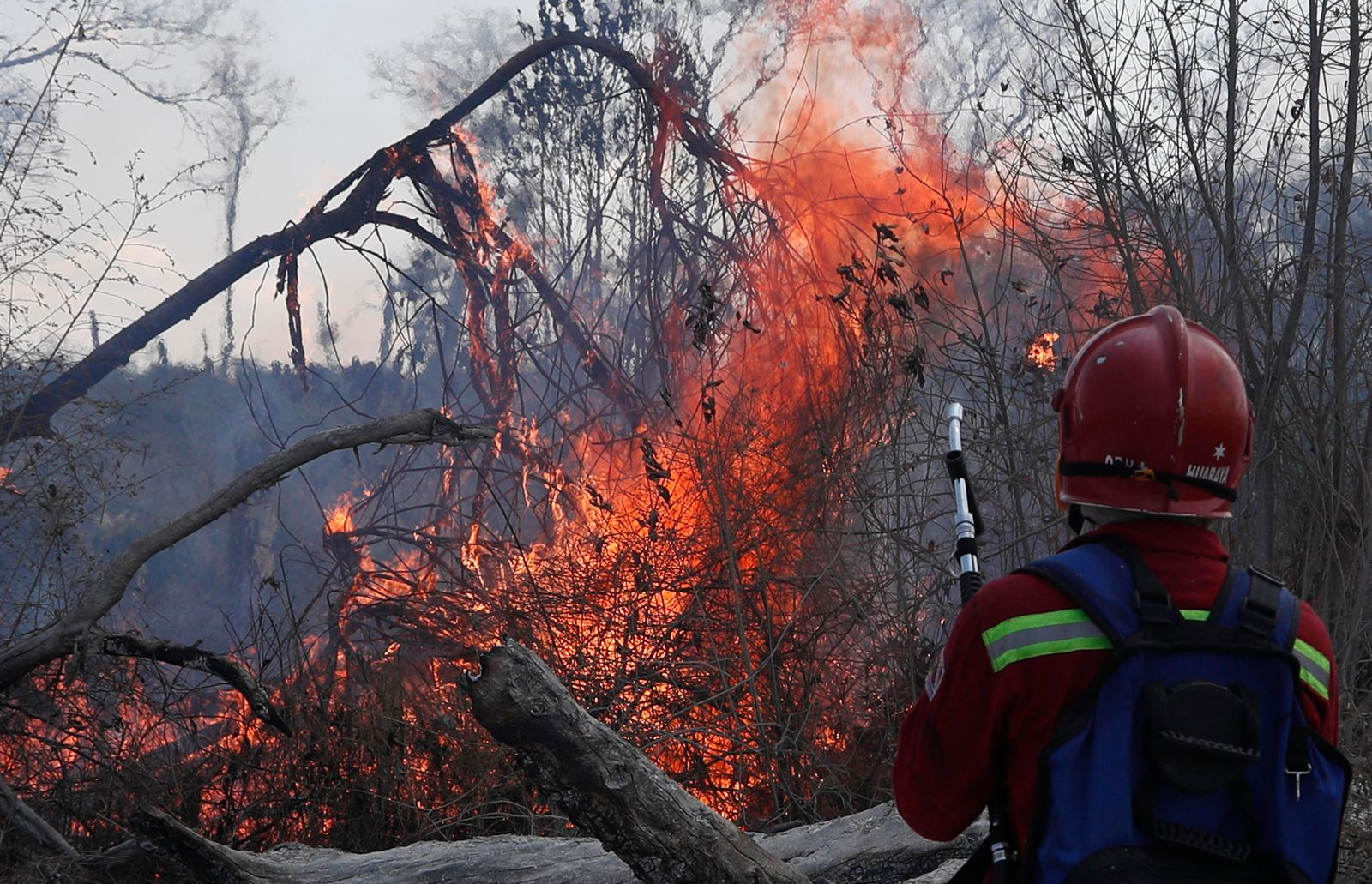 A firefighter works to put out a fire in the Chiquitania Forest in Santa Rosa de Tucabaca, on the outskirts of Robore, Bolivia, Wednesday, Aug. 28, 2019. (AP Photo/Juan Karita)