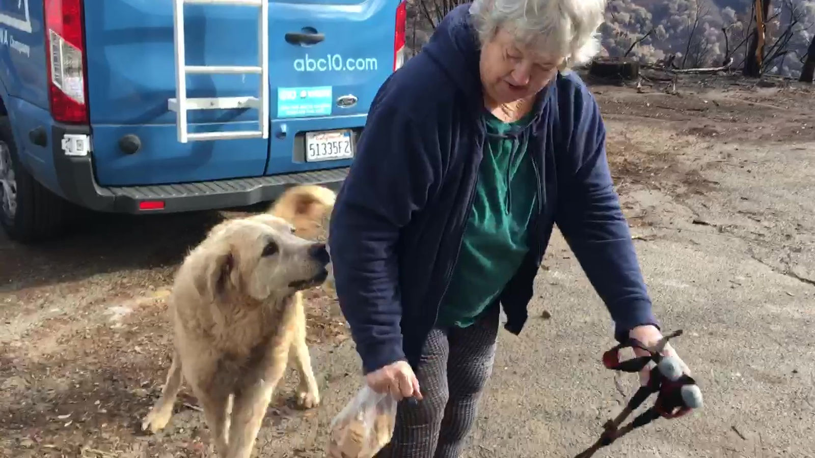 "In this Friday Dec. 7, 2018 image from video provided by Shayla Sullivan, ""Madison,"" the Anatolian shepherd dog that apparently guarded his burned home for nearly a month, greets his owner, Andrea Gaylord, as she was allowed back to check on her burned property in Paradise, Calif.{ } (Shayla Sullivan via AP)"