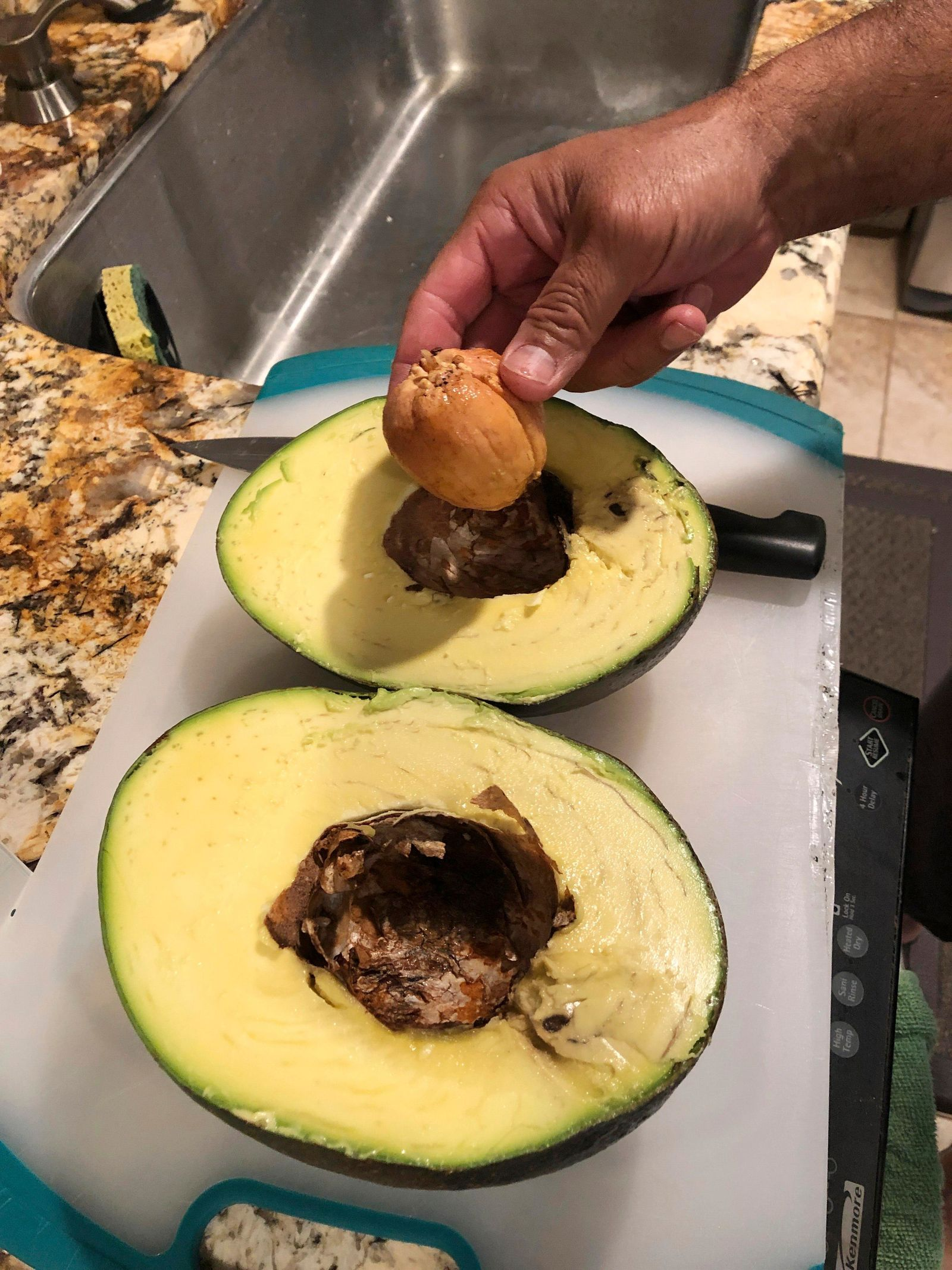 This Dec. 13, 2018 photo provided by Juliane Pokini shows a giant avocado being cut to make into guacamole at Kula Country Farms in Kula,Hawaii. The Pokini family from the island of Maui received the Guinness certificate this week for the avocado weighing 5.6 pounds (2.54 kilograms), The Maui News reported Thursday, Oct. 11, 2019. (Juliane Pokini via AP)