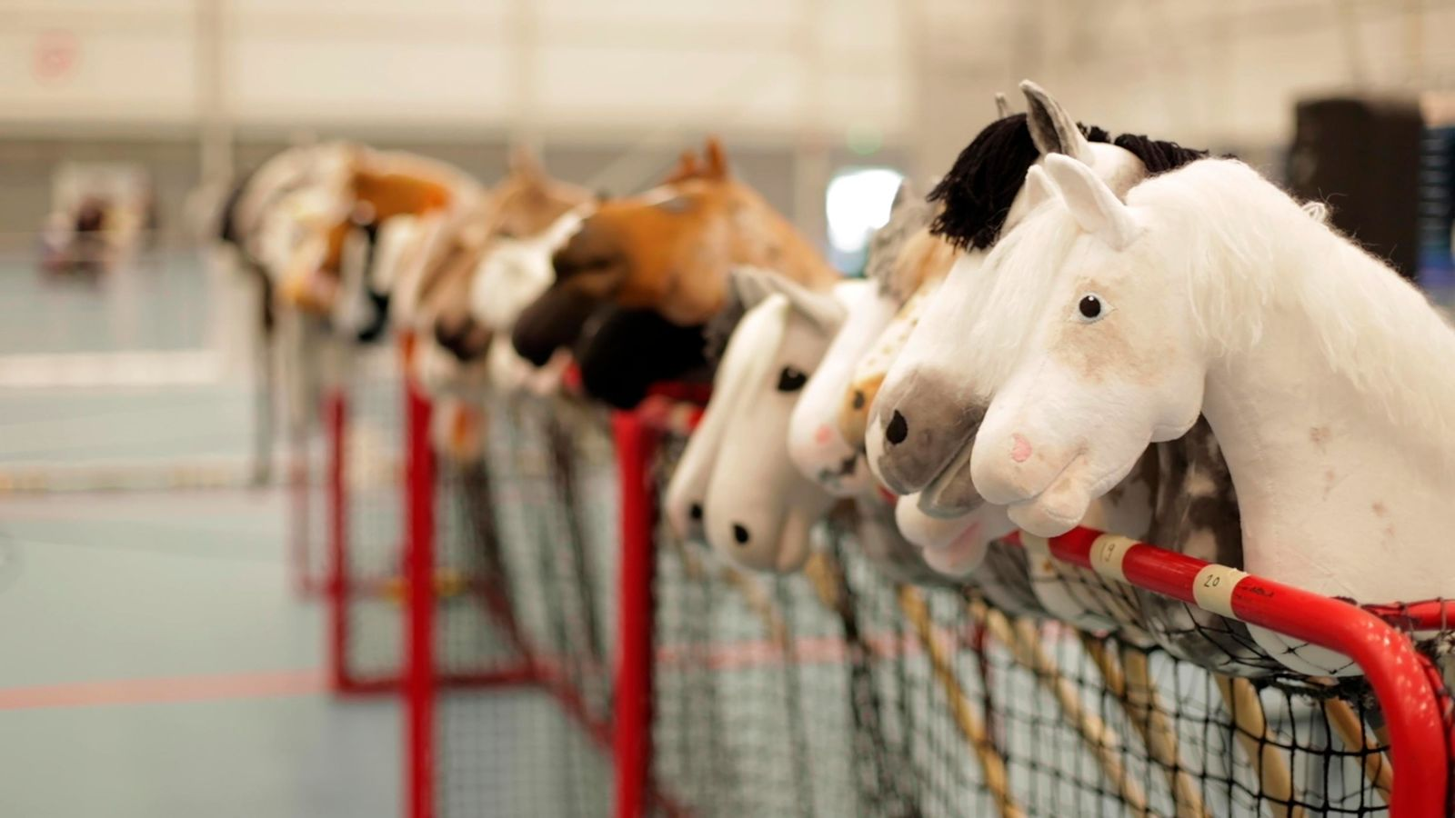 Dozens of hobby horses are lined up ready to be ridden during the 8th Hobby Horse championships in Seinajoki, Finland on Saturday, June 15, 2019. (AP Photo/from APTN Video)