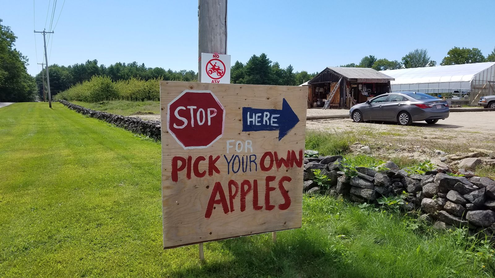Pick your own started at Randall Orchards in late August. (WGME)<p></p>