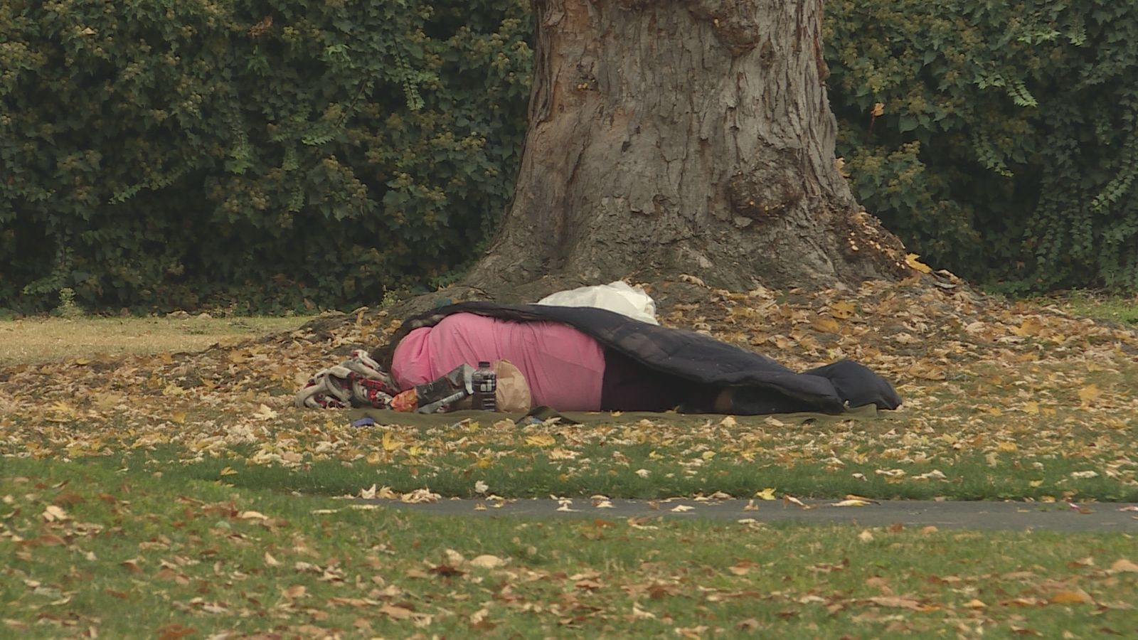 Homeless person in Hawthorne Park. (Carsyn Currier/News 10){ }