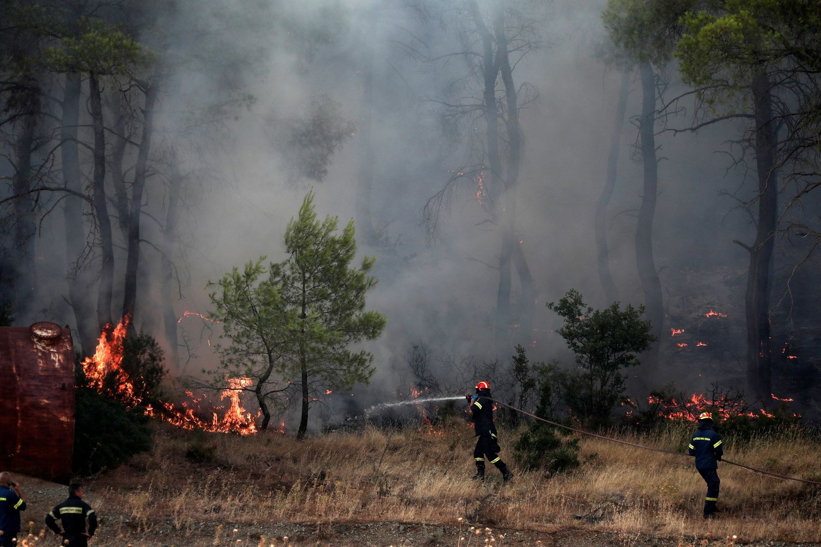 File- Firefighters try to extinguish a wildfire in Makrymalli village on the Greek island of Evia, Wednesday, Aug. 14, 2019. (AP Photo/Yorgos Karahalis)