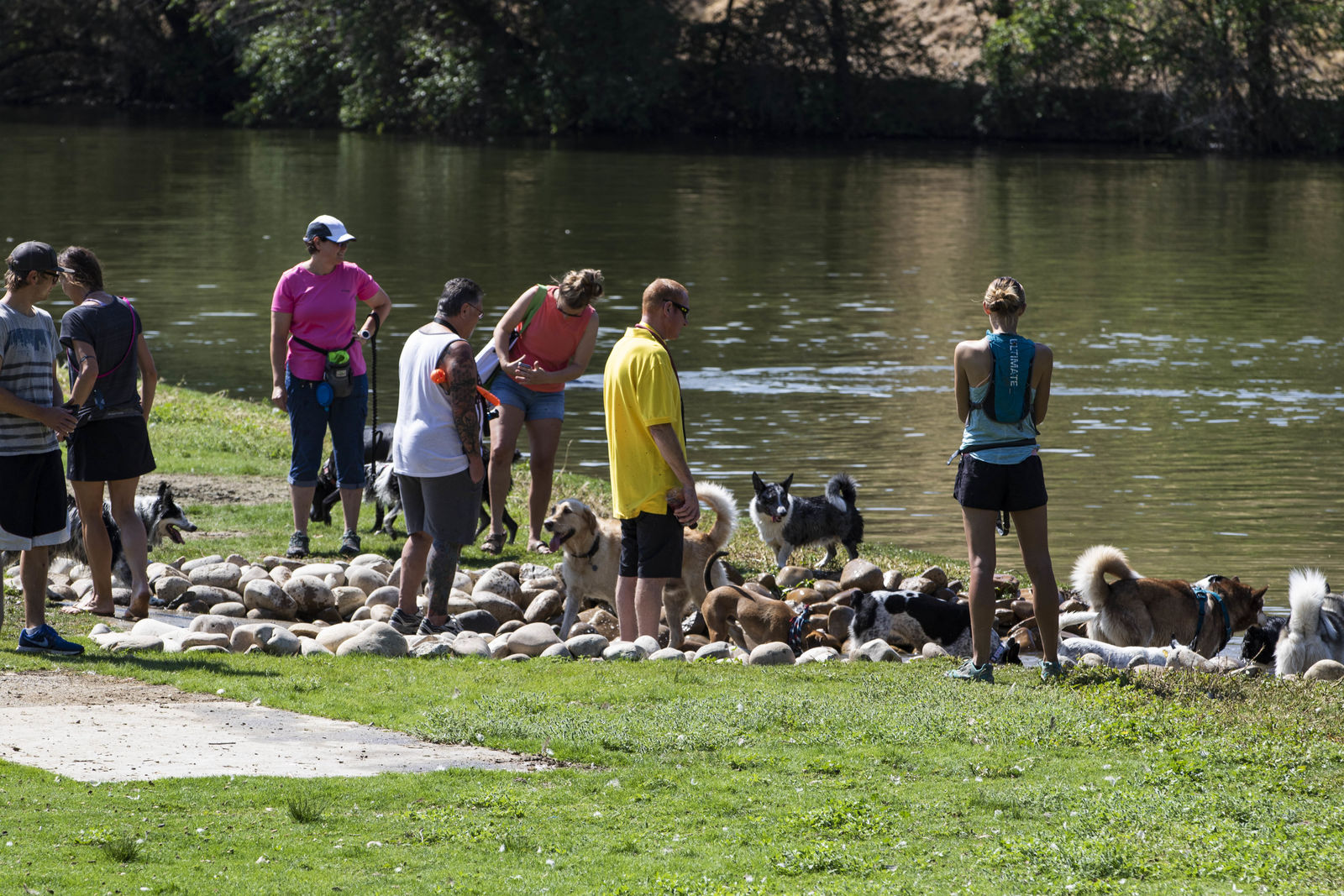 Together Treasure Valley Dog Island at Ann Morrison Park in Boise has opened! An off-leash area, five acres in size has opened for dogs owners to let their puppies run free. Surrounded by water, the park features several swim areas, picnic shelters, and drinking fountains. With all the dogs in the area, the hope is ducks and geese will find another area to leave their droppings as well. (Photos by Axel Quartarone){ }