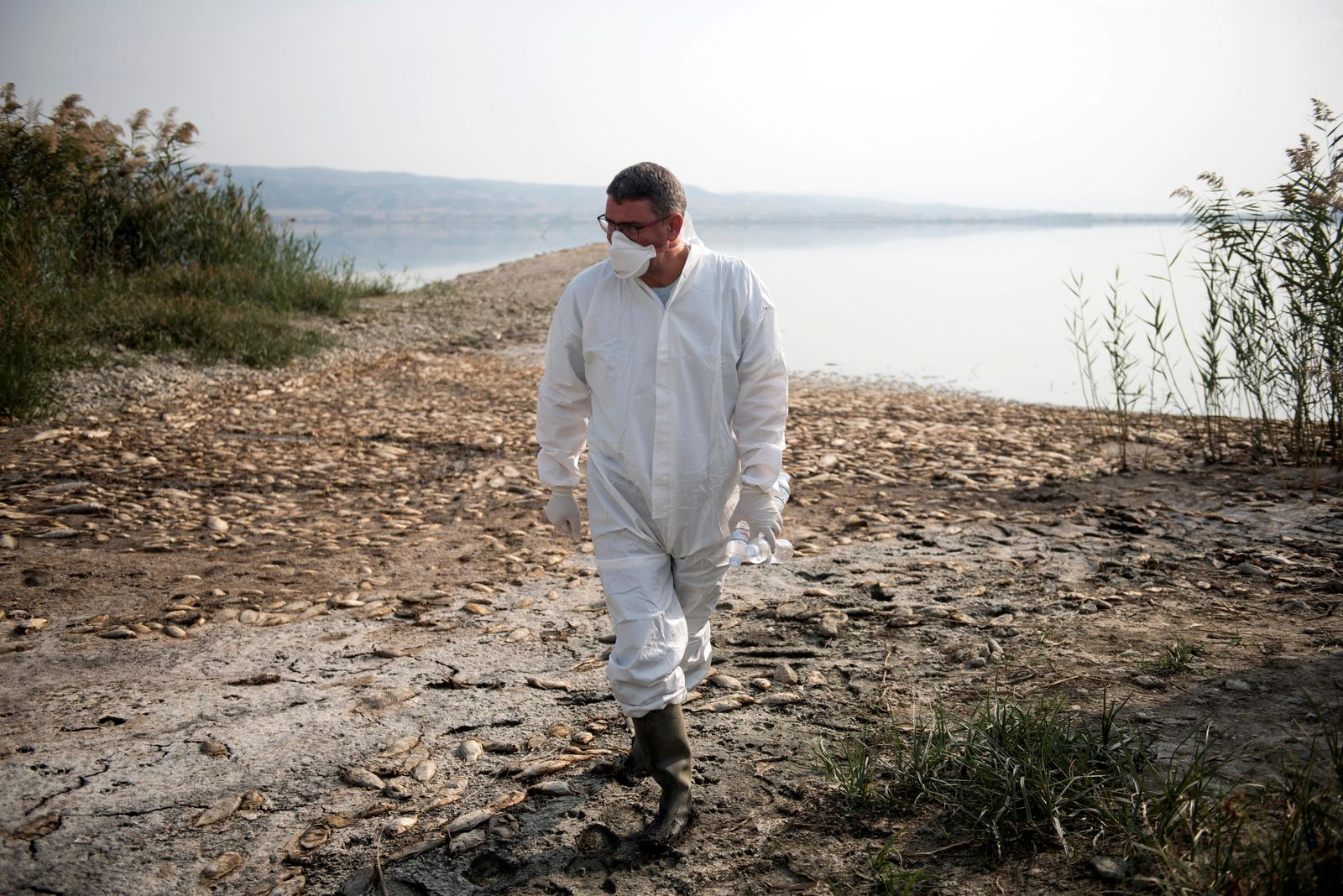 An expert inspects the shores of Koroneia Lake in northern Greece, on Thursday, Sept. 19, 2019. Thousands of freshwater fish have been found dead at Lake Koroneia, outside the northern Greek city of Thessaloiniki, after the water level fell sharply due to a drought in the region. (AP Photo/Giannis Papanikos)