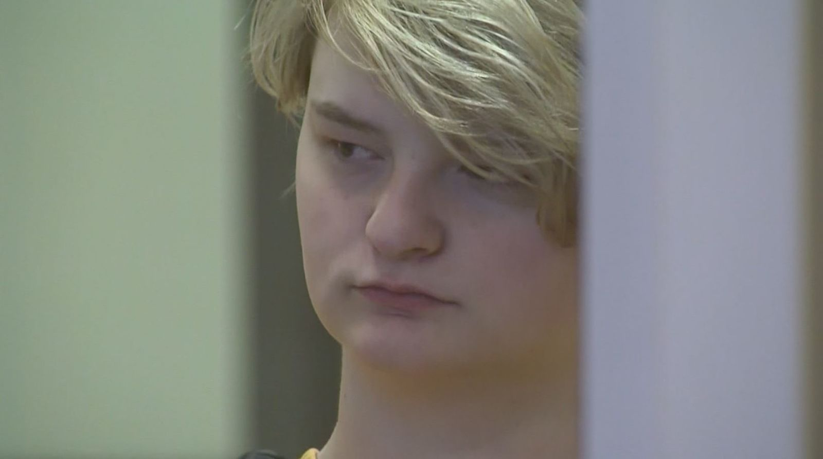 Authorities say 18-year-old Denali Brehmer gathered a group of friends to kill 19-year-old Cynthia Hoffman and record it for a man who wasn't what he claimed. (CNN Newssource)