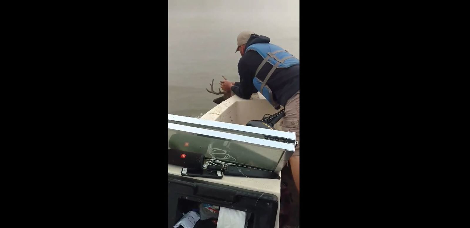 Fishermen save buck from drowning during Rising Sun Catfish Tournament (Courtesy Keith Janelle Hodge)