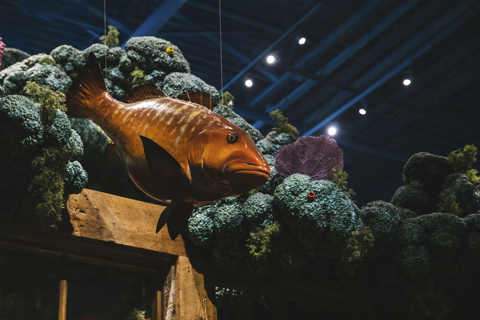 Photos Ocean Themed Tacoma Restaurant Bowling Alley Is An Absolute Catch Komo