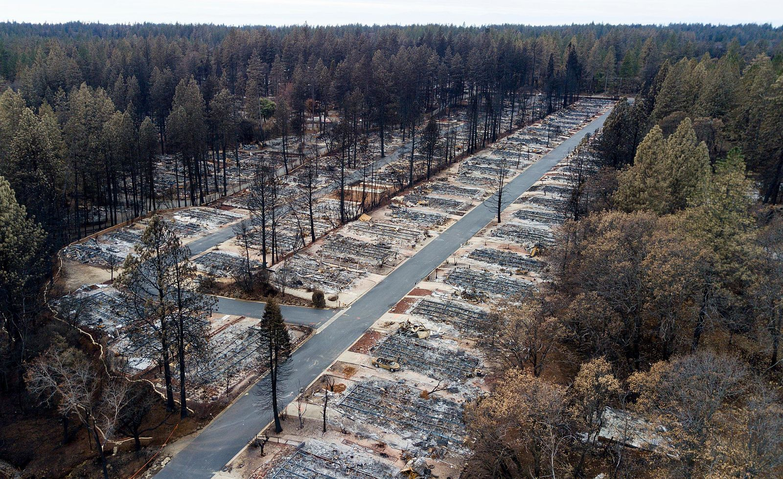 Homes leveled by the Camp Fire line the Ridgewood Mobile Home Park retirement community in Paradise, Calif., on Monday, Dec. 3, 2018. (AP Photo/Noah Berger)