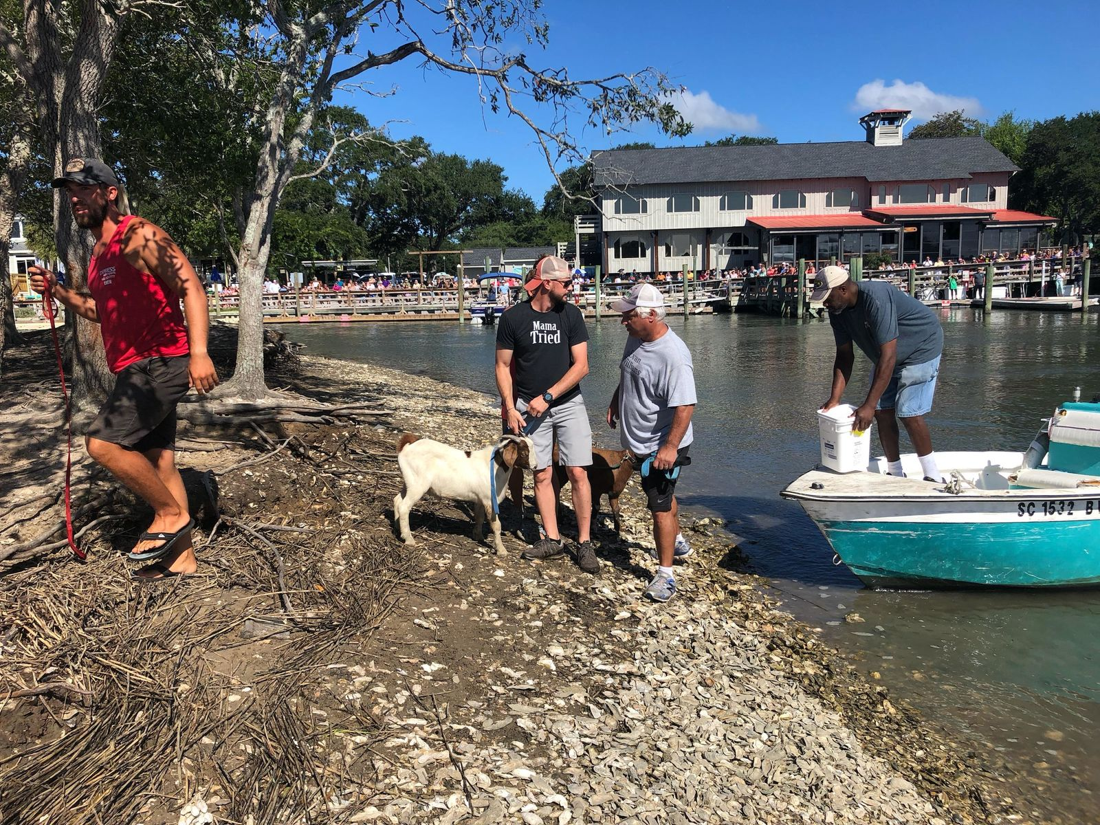 The occupants of goat island were brought ashore ahead of Hurricane Dorian, Sept. 3, 2019. (Credit: Amanda Kinseth/WPDE)
