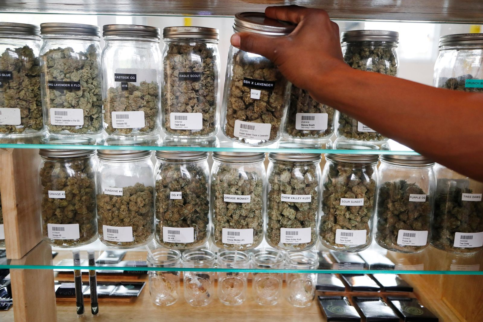 FILE - In this Oct. 2, 2018, file photo, a clerk reaches for a container of marijuana buds for a customer at Utopia Gardens, a medical marijuana dispensary in Detroit. Chronic pain is the most commonly cited reason people give when they enroll in state medical cannabis programs. A study published Monday, Feb. 4, 2019, in the journal Health Affairs looks at available data from states that allow marijuana for medical use. (AP Photo/Carlos Osorio, File)