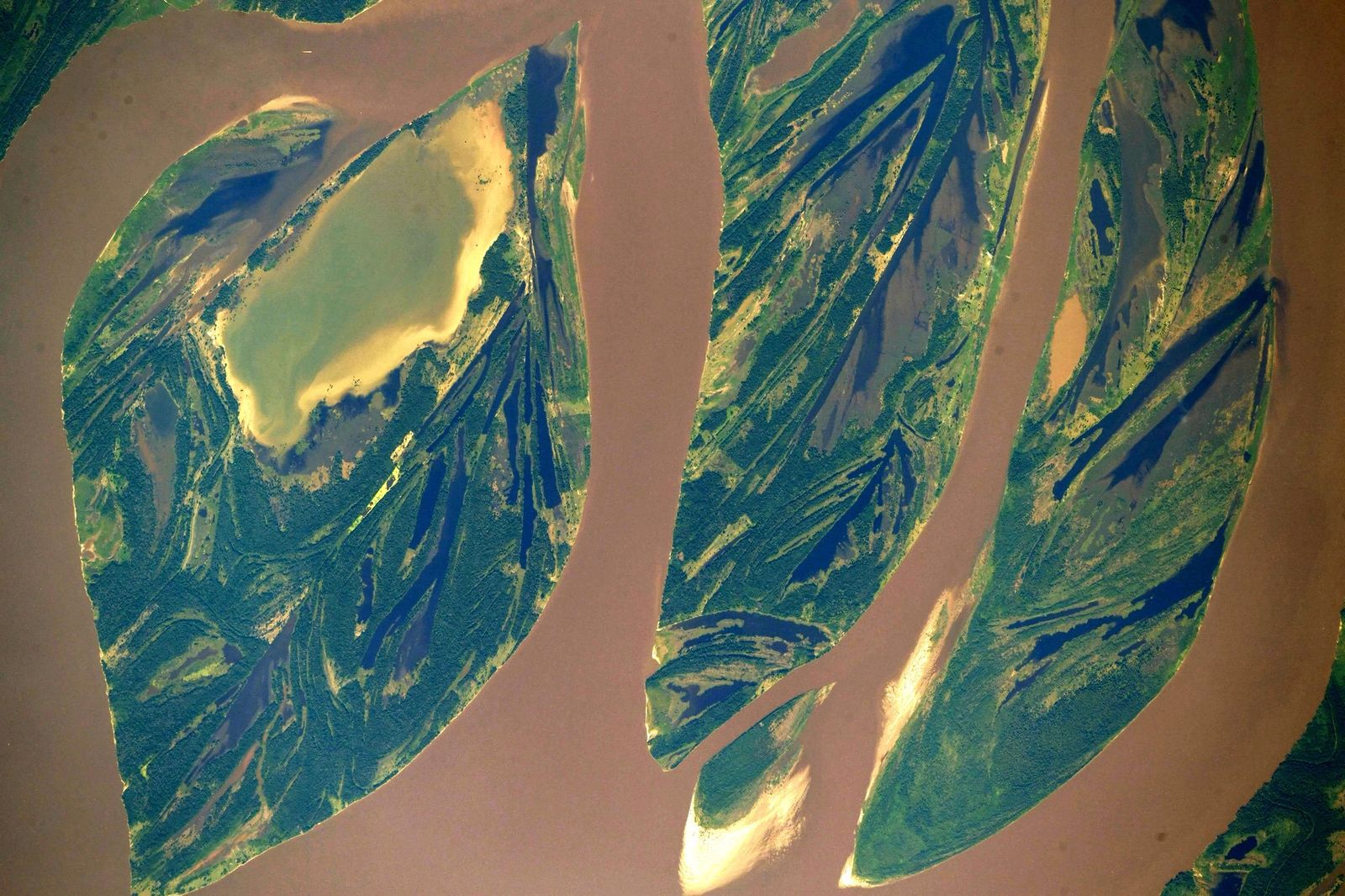 The work of art that is the #AmazonRiver in #Brazil (Photo & Caption Ricky Arnold, NASA)
