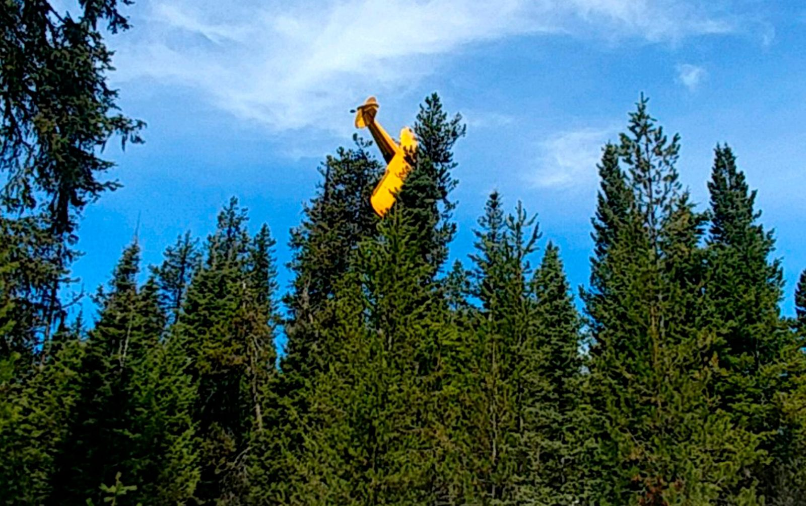 This undated photo provided by the Valley County Sheriff's Office shows a small plane where it came to rest at the top of a tree near the resort town of McCall, Idaho. (Undersheriff Jason Speer/Valley County Sheriff's Office via AP)