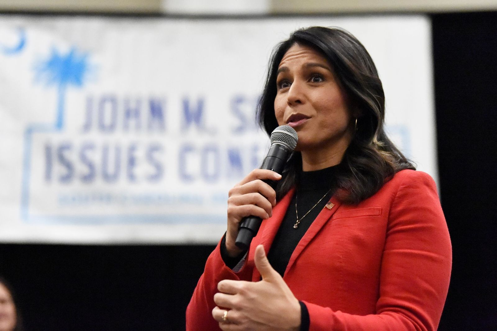 Democratic presidential candidate U.S. Rep. Tulsi Gabbard, D-Hawaii speaks to Democrats gathered at the Spratt Issues Conference in Greenville, S.C., Saturday, Dec. 14, 2019.  (AP Photo/Meg Kinnard)