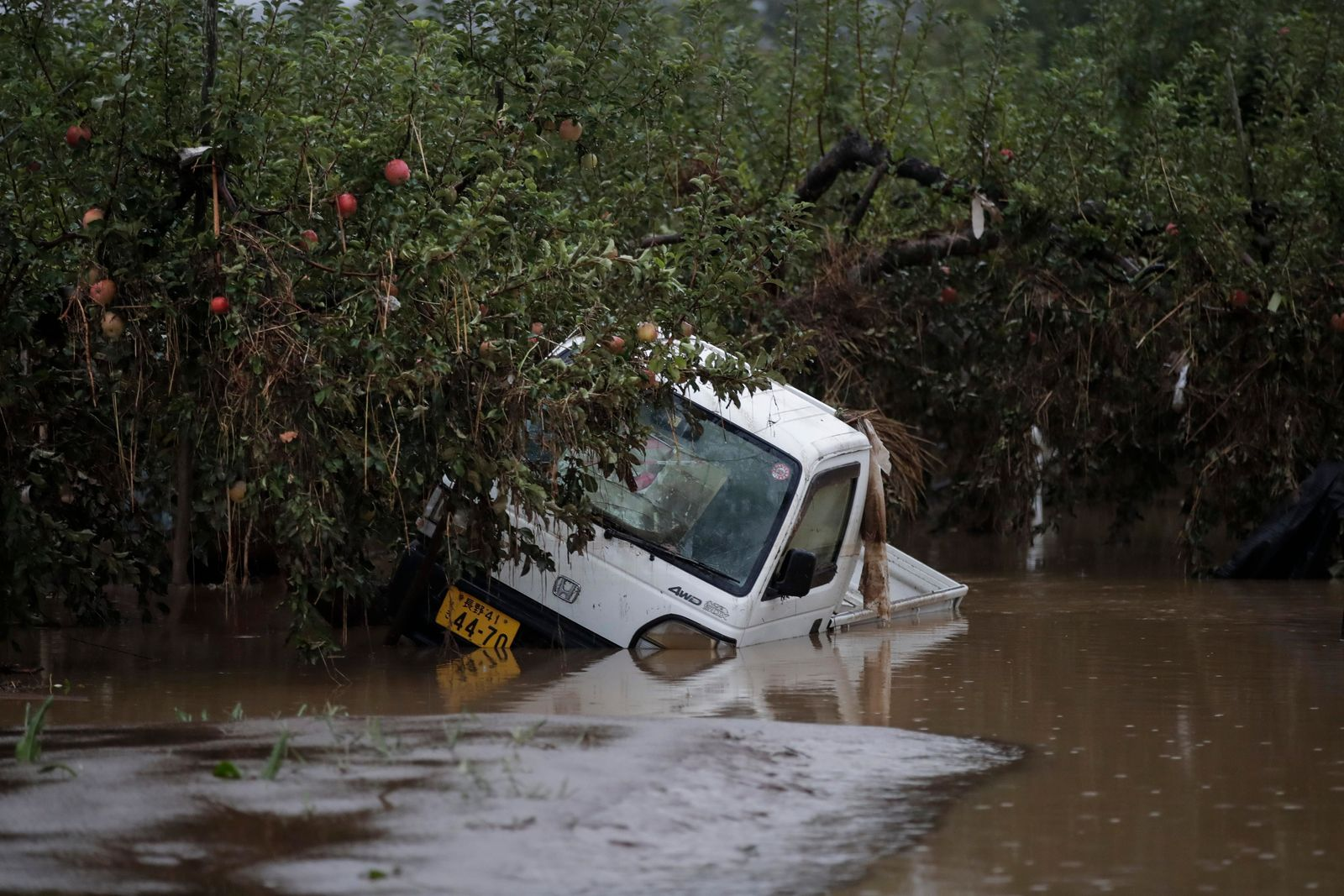 A small pickup truck is submerged in floodwaters at an apple orchard, Monday, Oct. 14, 2019, in Hoyasu, Japan. Rescue crews in Japan dug through mudslides and searched near swollen rivers Monday as they looked for those missing from a typhoon that left as many as 36 dead and caused serious damage in central and northern Japan. (AP Photo/Jae C. Hong)