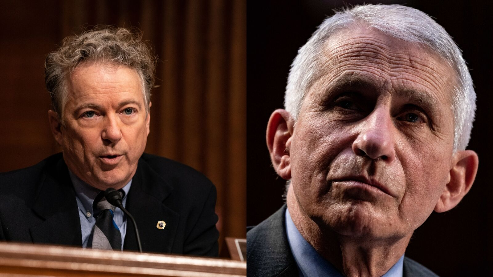 Sen. Rand Paul's dustup with Fauci raises question — what is gain-of-function research?   photo 1