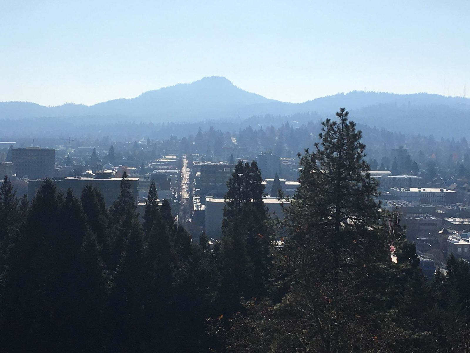 New estimate shows Eugene's population has risen to above 171,000 for first time ever (SBG)