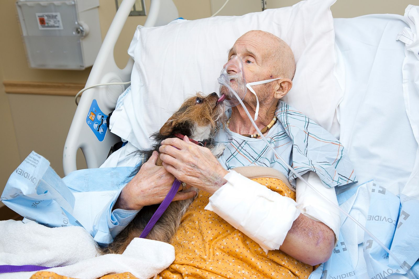 A Vietnam war veteran in hospice care said a final goodbye to his dog as his dying wish. (Albuquerque Animal Welfare)
