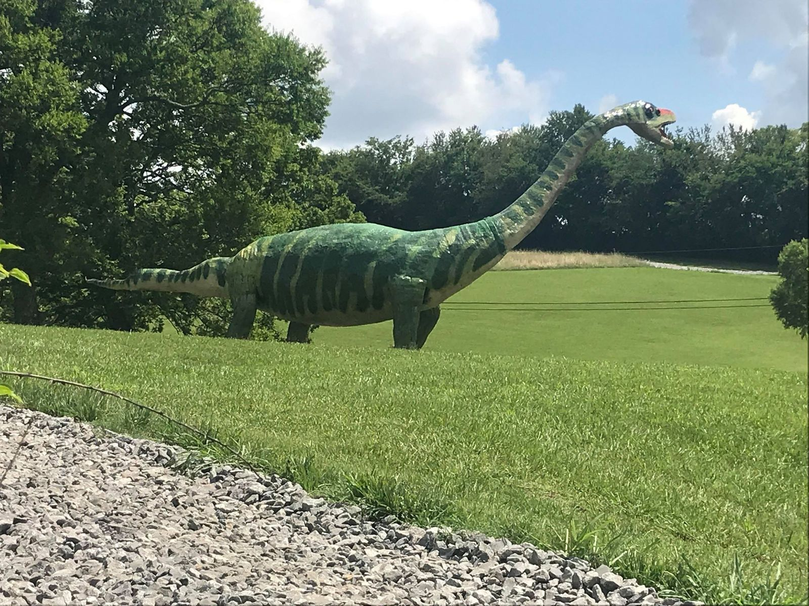 Crocs founder George Boedecker displays fake dinosaurs and other wildlife on his property in Bellevue, Tenn. (Image: WZTV)
