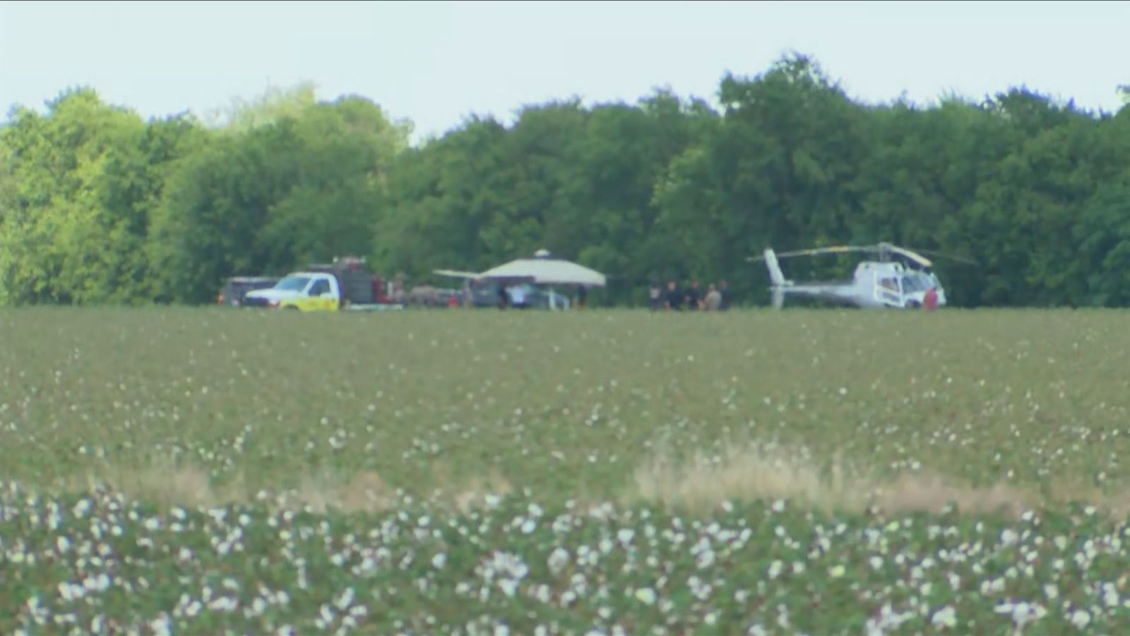 Two people are dead after a helicopter crash in WilCo. (Photo: CBS Austin)